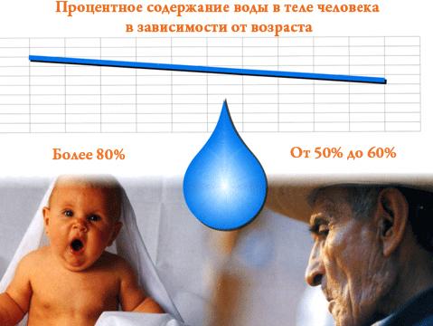 Процентное содержание воды в теле человека